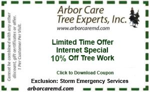 Arbor Care Tree Expert Coupon - 10% Off